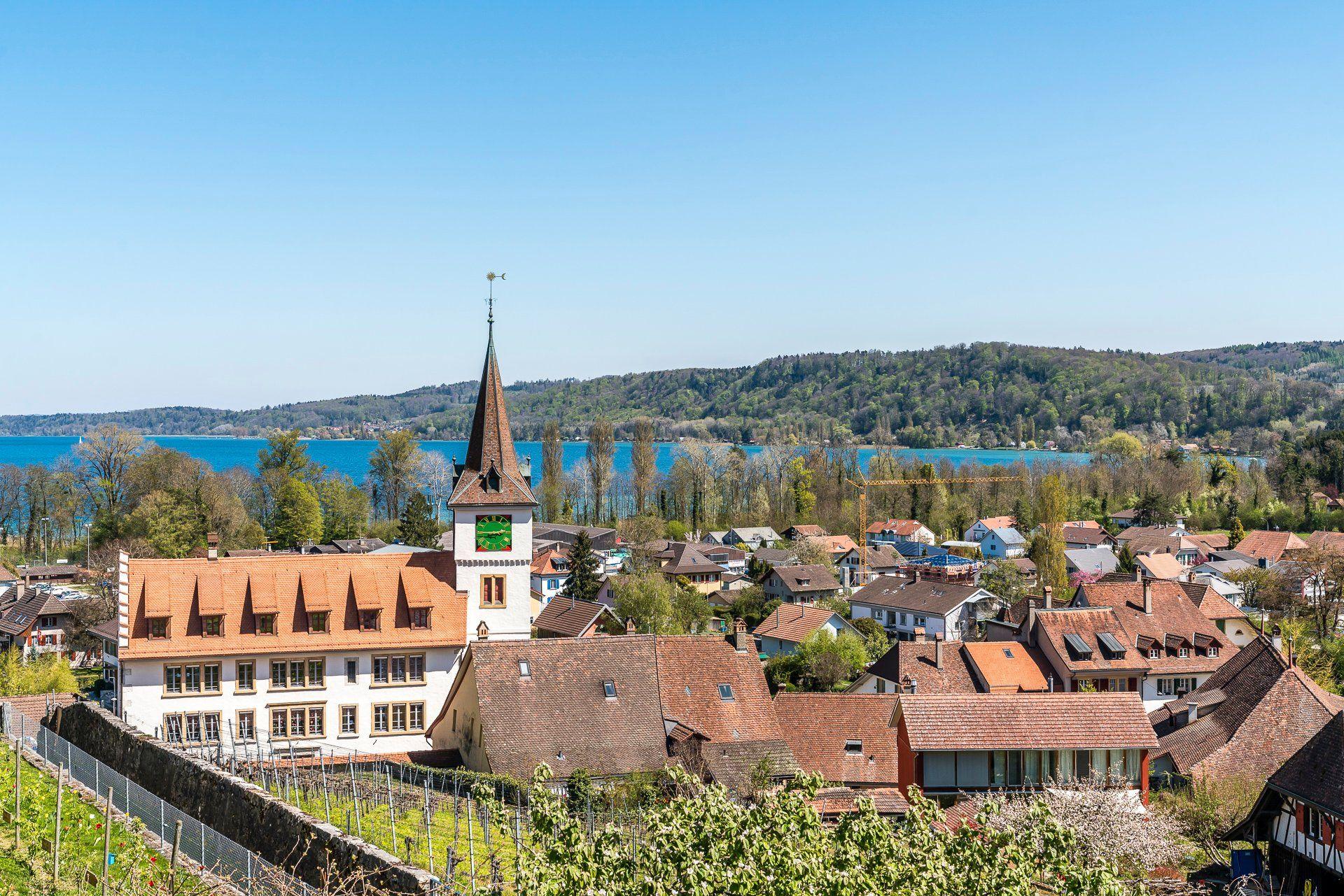 Panorama-Schloss-Erlach.jpg