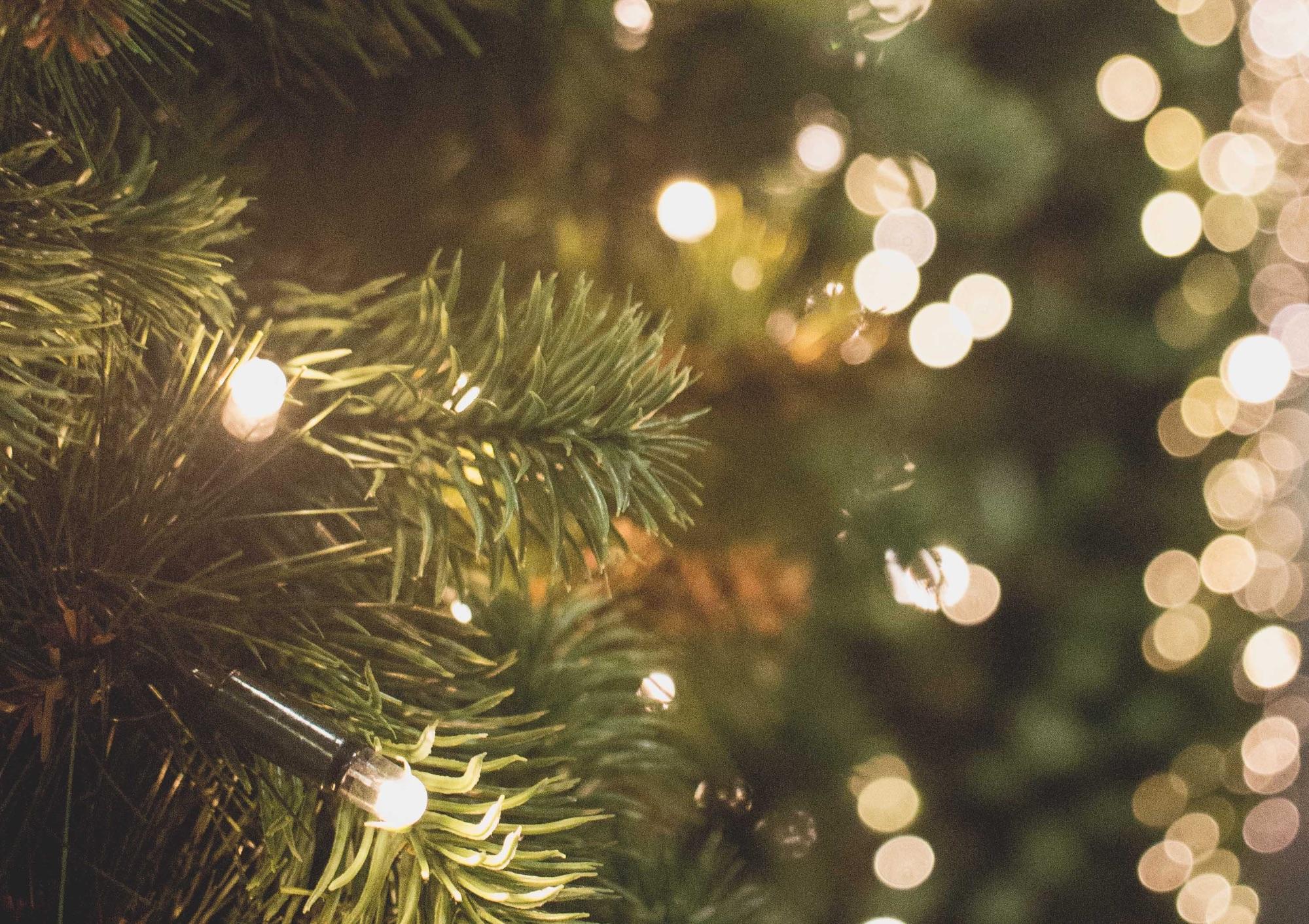 picography-christmas-lights-2.jpg