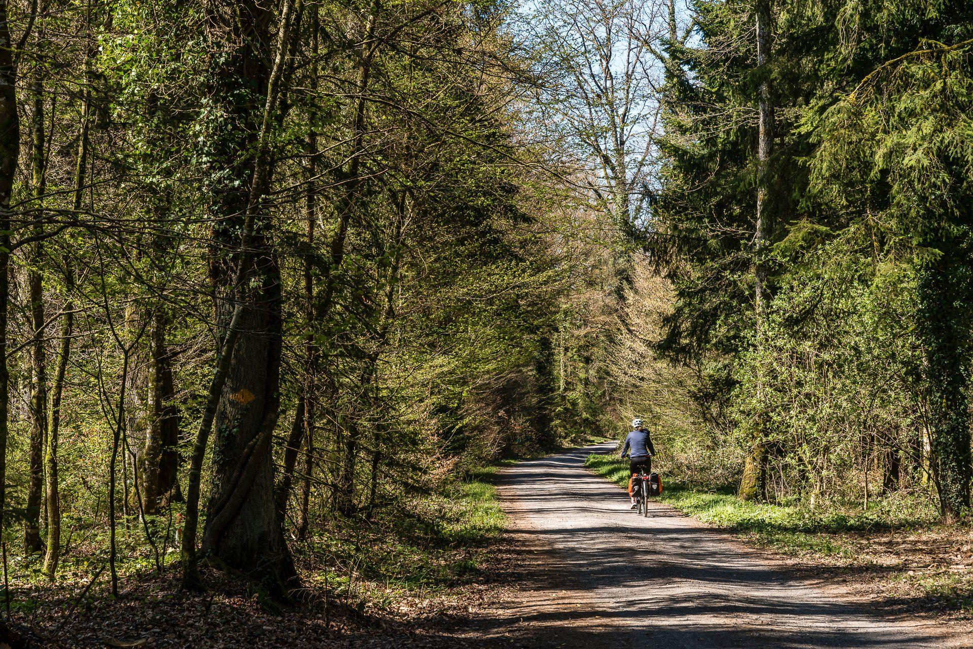 Veloweg-Oberaargau.jpg